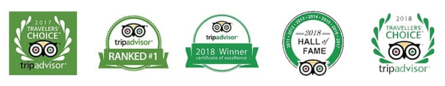 Scottsdale Segway Tours consistently is ranked #1 by people on TripAdvisor. These badges showcase being 2017 travelers' choice, Ranked #1, 2018 winner of the certificate of excellence, 2018 hall of fame winner, and 2018 travelers' choice recipient